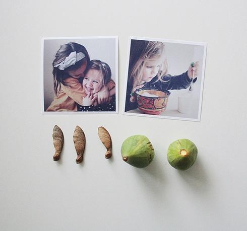 Babioles d'automne