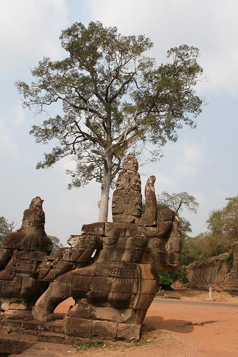 Cambodge *  Siem Reap * Angkor