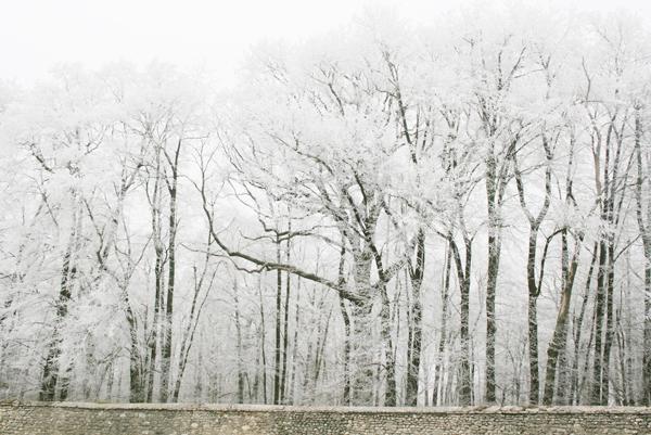 saison froide